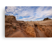 Majestic Mungo - Mungo NP, NSW Canvas Print