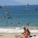Pelicans above the shore - Pelícanos arriba de la Playa by PtoVallartaMex