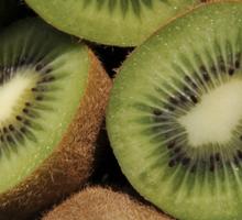 Kiwi Fruit Sticker