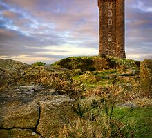 Scrabo Tower by Chris Cardwell