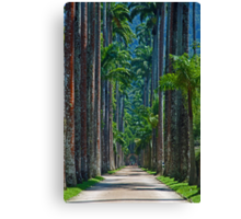 Tall and slim ... Canvas Print