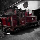 Puffing Billy Engine by Colin  Ewington