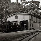 Puffing Billy Railway Yard by Colin  Ewington