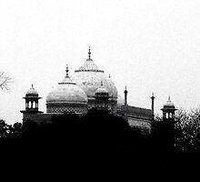Dusty and grey by Ritu Lahiri
