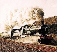 Steam Train in Landscape by Abie Davis