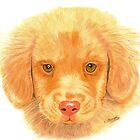 Puppy by Nikki Fraser