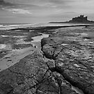 Bamburgh castle and coast No4  by StephenRB