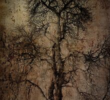 Grunge Art Part II - Grungy Tree by Erik Brede