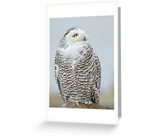 Early visitor Greeting Card