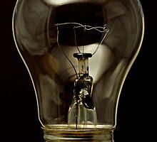 High Temp Appliance Bulb by Otto Danby II
