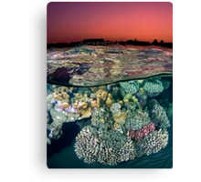 Sunset at the Red Sea Reef Canvas Print