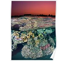 Sunset at the Red Sea Reef Poster