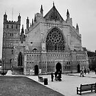 Exeter Cathedral Green In Winter by Andy Mackay