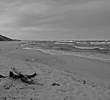 Cloudy Day on Lake Michigan by North22Gallery
