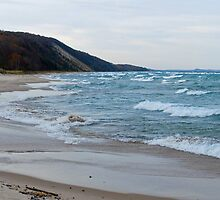 Dunes near Pierport on Lake Michigan by North22Gallery