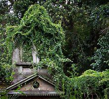 Urban Jungle Ruin by diggle