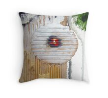 she is with me detail Throw Pillow