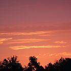 Pigeon Roost Prairie Sunrise by freevette