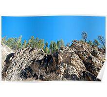 Spearfish Canyon in Black Hills, South Dakota Poster