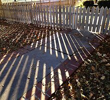 Picket Fence by WildestArt