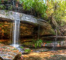 Somersby Falls V - Central Coast by Brad Woodman