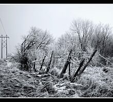 Posts and Wires by KBritt