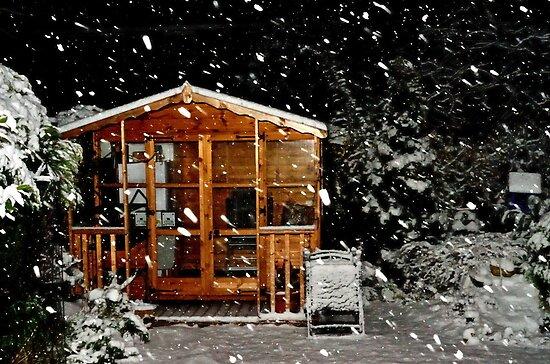Summer House  by Steve