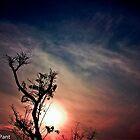 sun set...(beauty of Nepal) by naresh dev pant