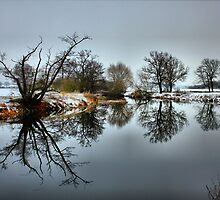 Winter wonder land reflections by yampy