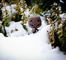 The Abominable Sackboy by Jez  Bradshaw