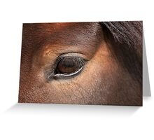 The Eyes say it All (Pam) - NNEP Ottawa, ON Greeting Card
