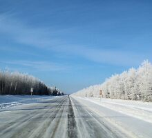 winter road by Cheryl Dunning