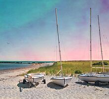 Cosmic Cape Cod by Robin-Lee