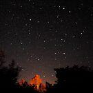 Starry Sky by Robin Lee