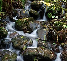 Stream over Rocks by North22Gallery