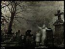 Lost in Limbo by Scott Mitchell