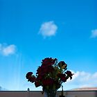 Sky Roses by marychaco