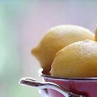 Lemons by Hege Nolan