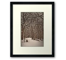 Snowy bridge Framed Print