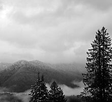 Cacades from Mount Pilchuck by North22Gallery