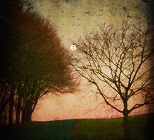 Flying at Twilight by Debra Fedchin