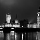 The Houses of Parliament by GIStudio