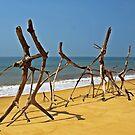 Dali on the beach by heinrich