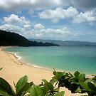 Waimea Bay North Shore Oahu by Andrew  MCKENZIE