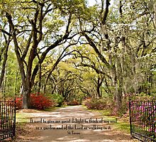 St. Francisville 381 by Bonnie T.  Barry