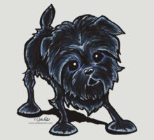 Affenpinscher @ Play by offleashart