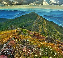 Mount McDonald by Kevin McGennan