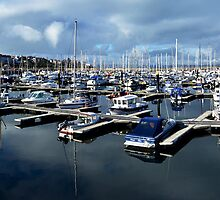 Bangor Marina No.1 by Chris Cardwell