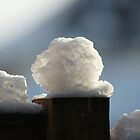 Snowball on fence by Andy Turp