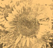 Vintage Sunflower artwork #2 by Nhan Ngo